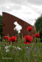 Memorial and Poppies